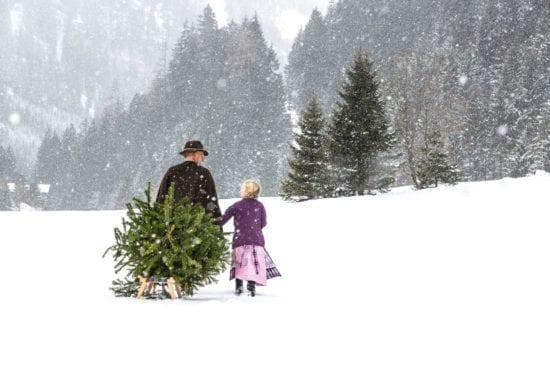 Mann zieht Tannenbaum auf Schlitten durch Schnee