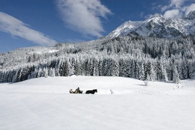 Pferdeschlittenfahrten - Winterurlaub in Wagrain